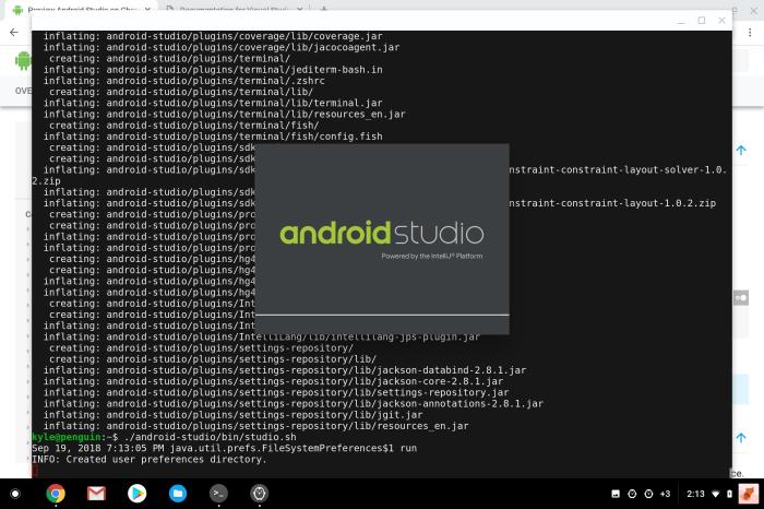 Chrome OS Terminal Android Studio