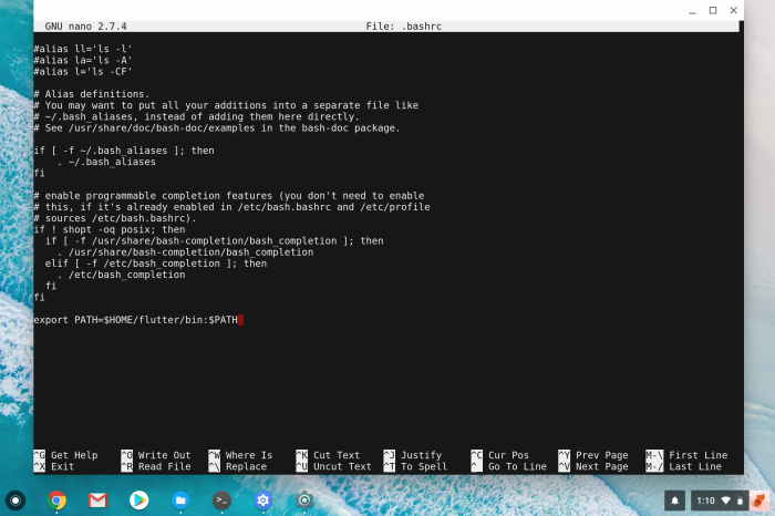 Add Flutter to Chrome OS Linux container PATH