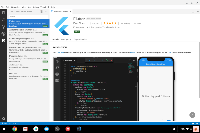 Flutter on Chrome OS Visual Studio Code extension