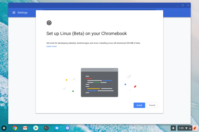 Chrome OS Linux Apps set up