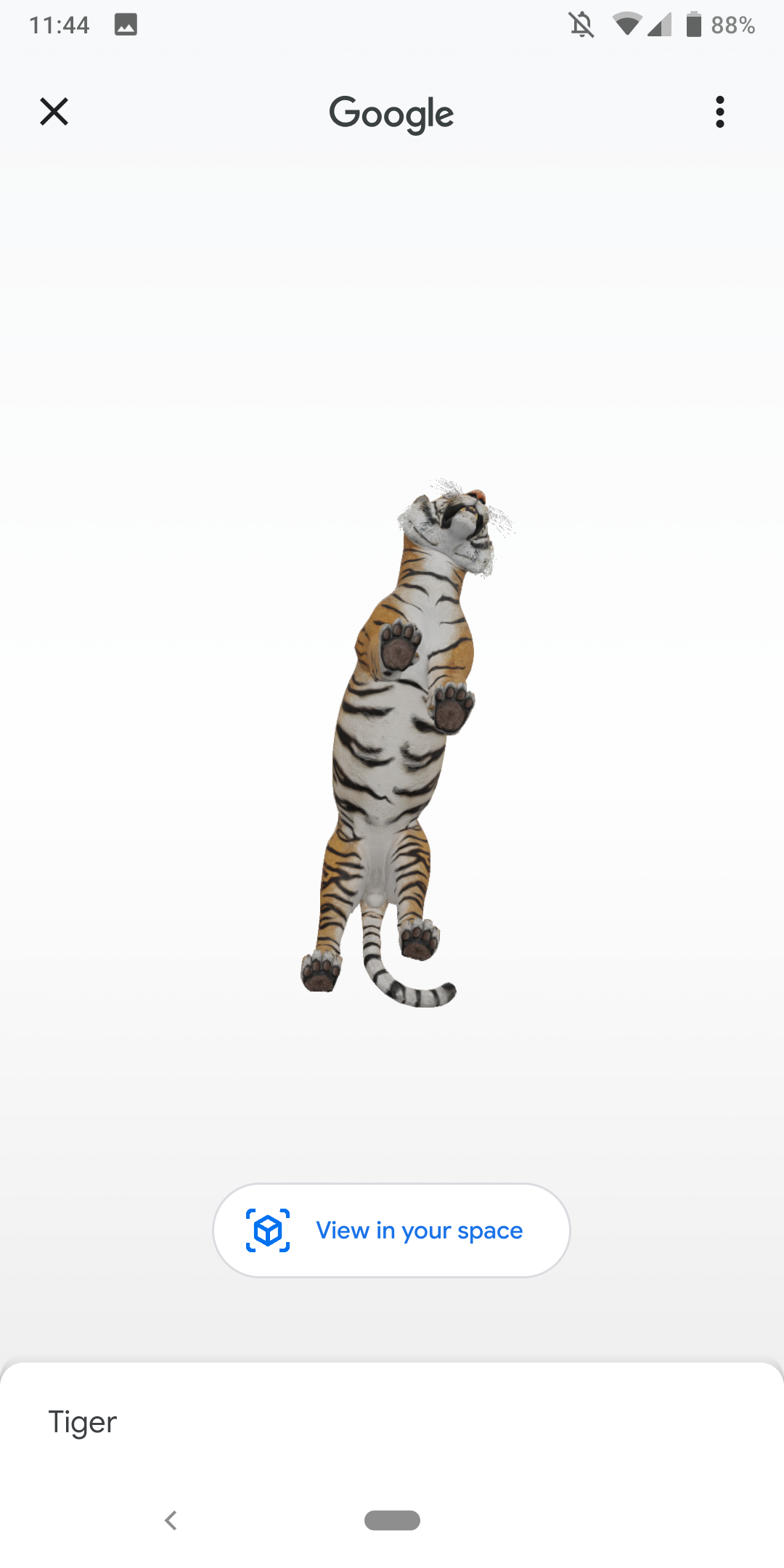 First Ar Objects Launch In Google Search With 3d Animals 9to5google