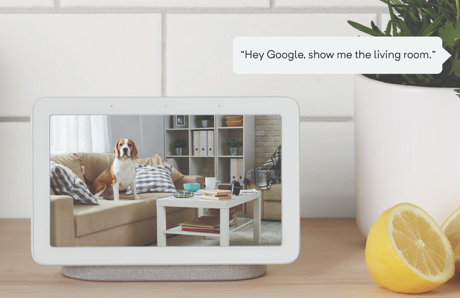 Wyze cameras add Google Assistant support w/ live feeds