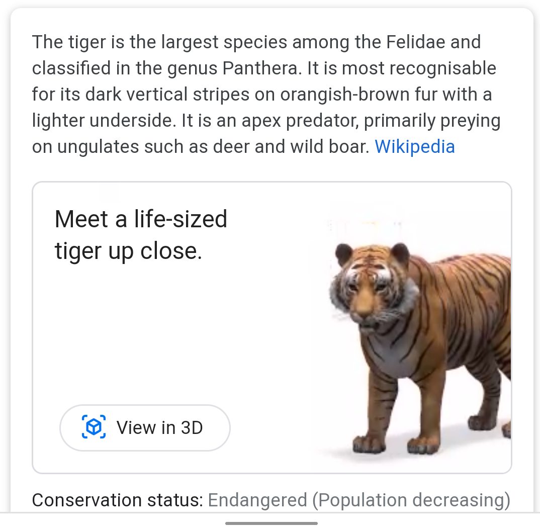 google 3d animals tiger view in 3d your space