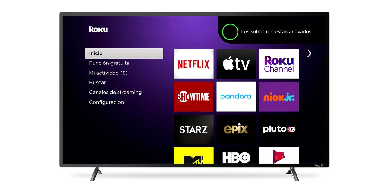 roku voice support