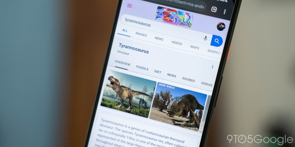 This year, the neat trick of viewing animals in 3D via Google Search exploded in popularity, and in the time since, Google has massively expanded the
