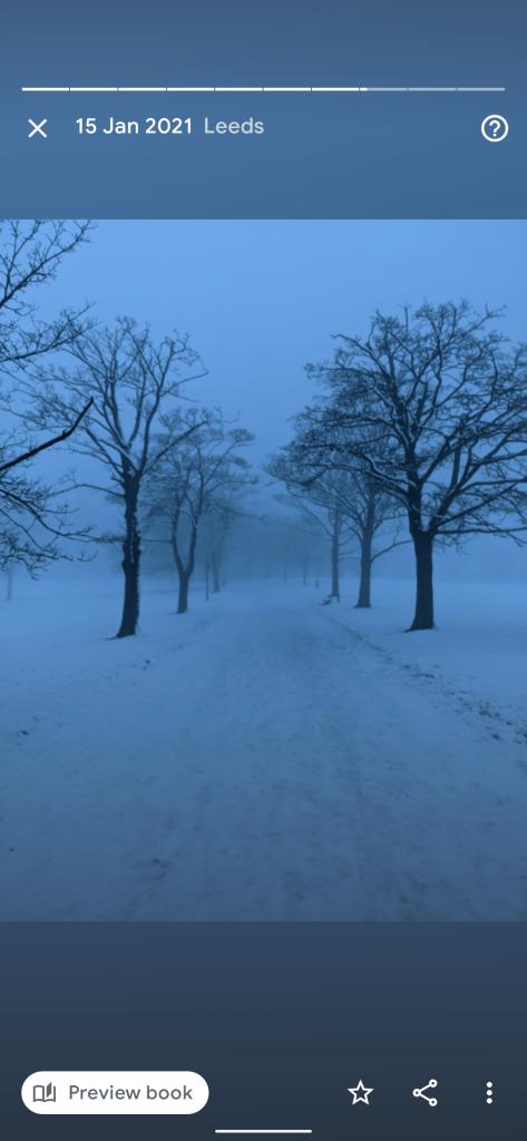 google photos best of winter 2020